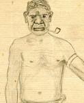 Albert Borella's sketch of his travelling companion, Charlie.