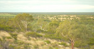 The vast Outback